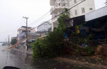 70/110 xã ở Phú Yên mất điện do bão số 12