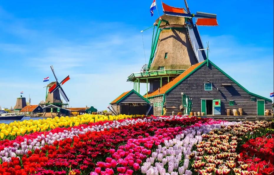 Những địa điểm yêu thích ở Amsterdam- Hà Lan đang chờ đón bạn khám phá