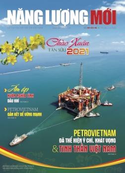 Tạp chí Năng lượng Mới - Xuân 2021